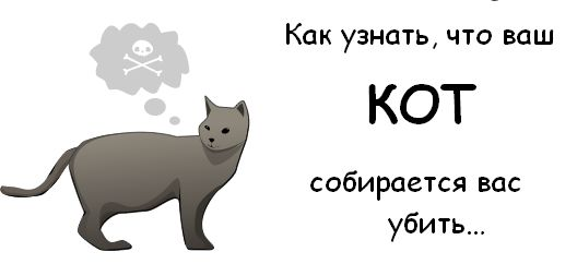 http://trinixy.ru/pics3/20081114/cat_01.jpg
