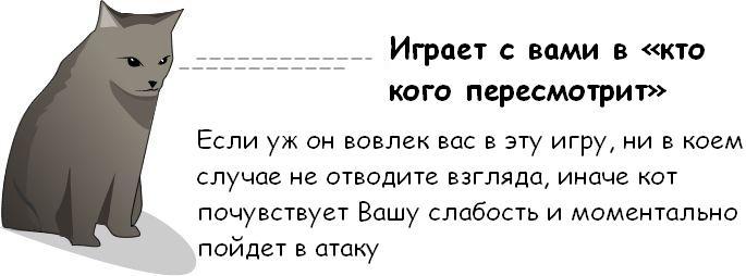 http://trinixy.ru/pics3/20081114/cat_04.jpg