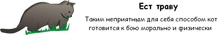 http://trinixy.ru/pics3/20081114/cat_06.jpg