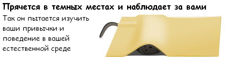 http://de.trinixy.ru/pics3/20081114/cat_07.jpg