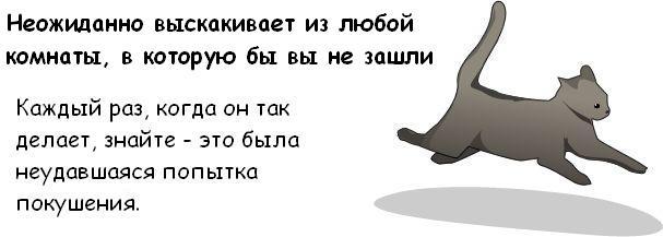http://trinixy.ru/pics3/20081114/cat_10.jpg
