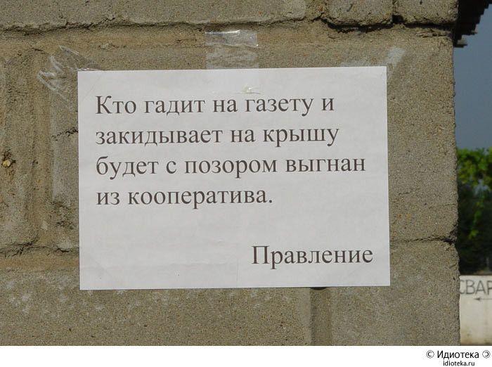http://trinixy.ru/pics3/20081119/idioteka_03.jpg