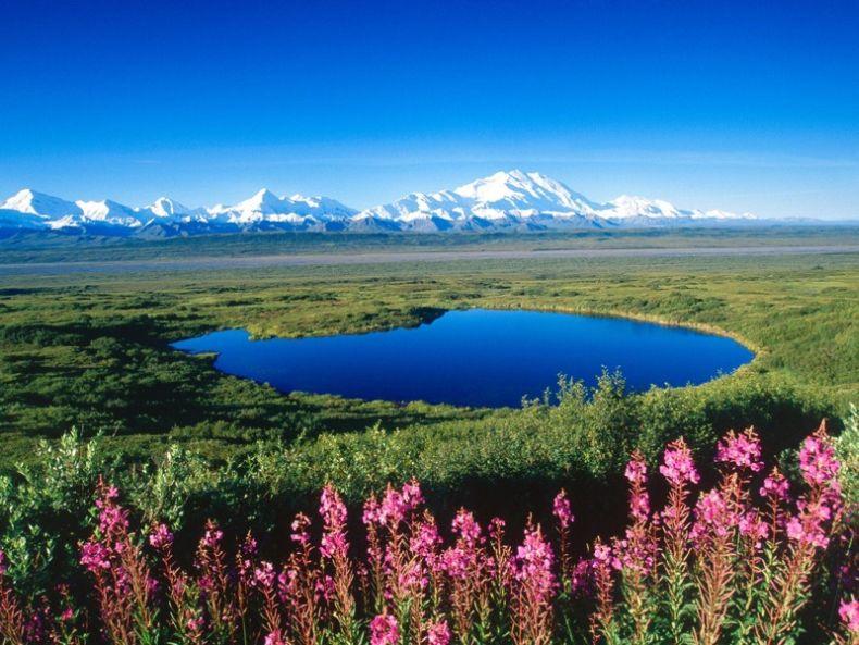 Красивая природа (27 Фото)