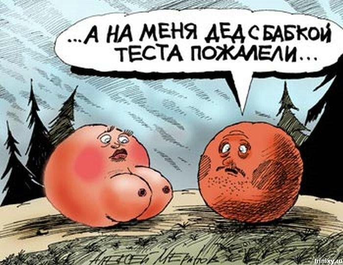 Карикатуры Алексея Меринова (81 фото)