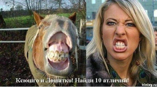 https://cdn.trinixy.ru/pics3/20081222/sobchak_04.jpg