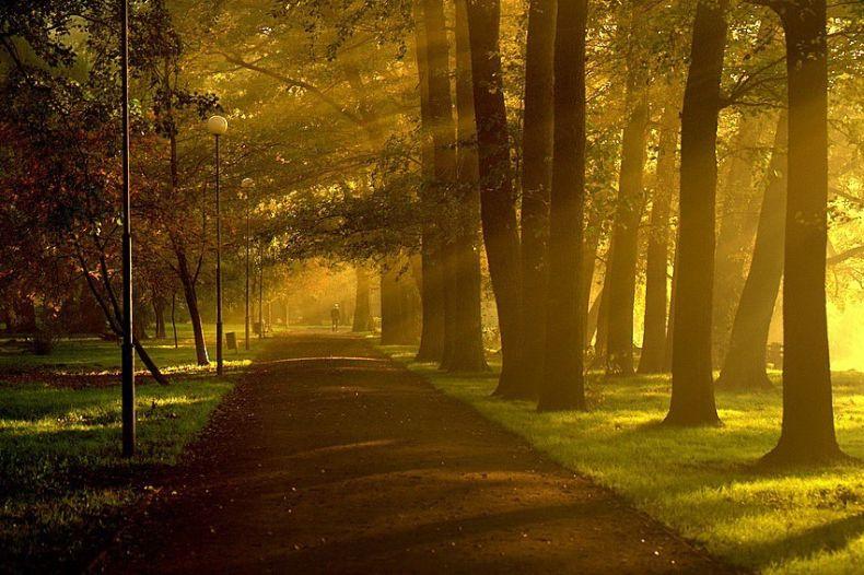 http://ru.trinixy.ru/pics3/20081226/nature_14.jpg