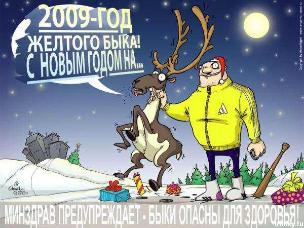 С Годом жёлтого быка!