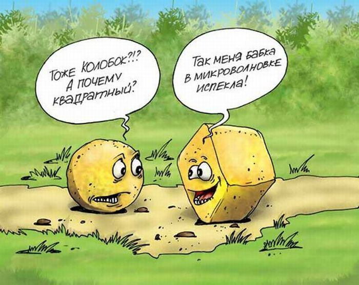 http://ru.trinixy.ru/pics4/20090116/karikatury_36.jpg