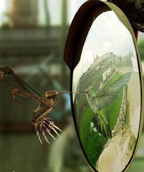 Мир это зеркало картинка