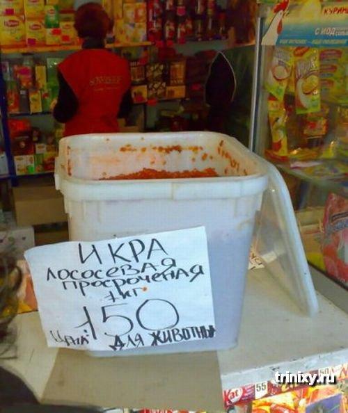 Казахстан смешные картинки, картинки как сделать