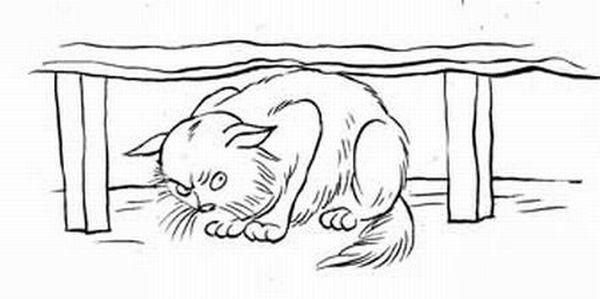Ребенок и кот (6 картинок)