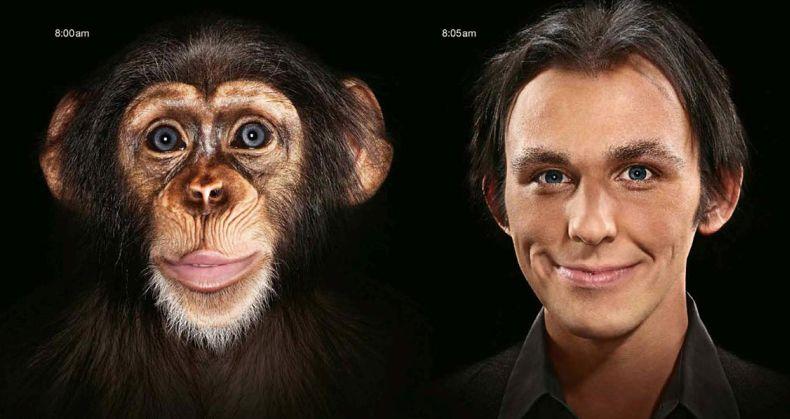 Эволюция (56 картинок)