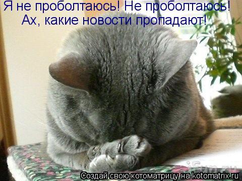 http://de.trinixy.ru/pics4/20090319/kotomatrix_06.jpg
