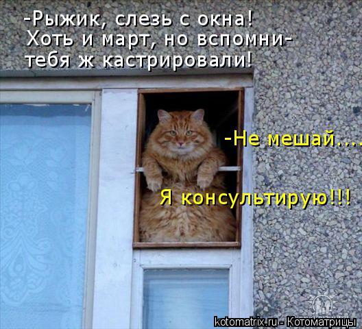 http://de.trinixy.ru/pics4/20090319/kotomatrix_13.jpg