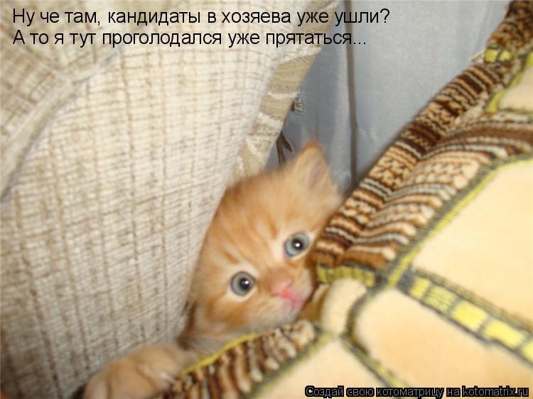 http://de.trinixy.ru/pics4/20090319/kotomatrix_18.jpg
