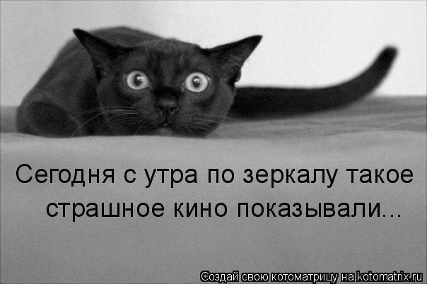 http://de.trinixy.ru/pics4/20090319/kotomatrix_20.jpg