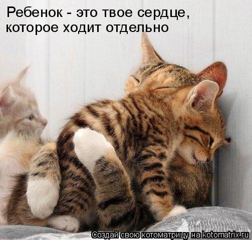 http://de.trinixy.ru/pics4/20090319/kotomatrix_22.jpg