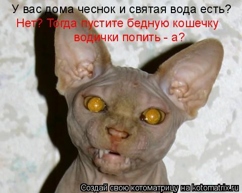 http://de.trinixy.ru/pics4/20090319/kotomatrix_24.jpg