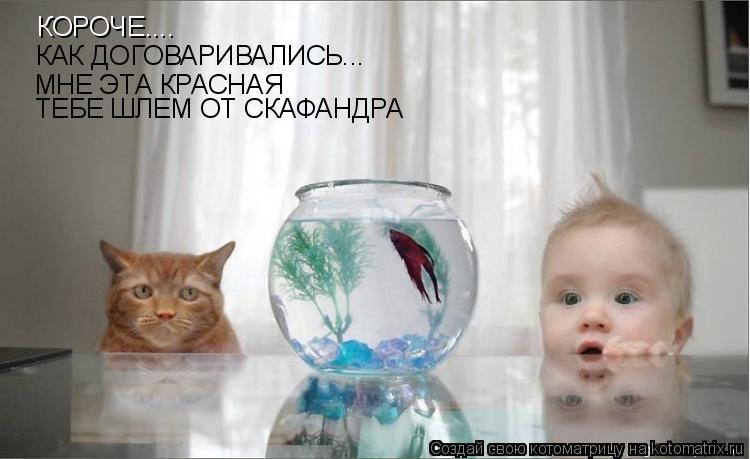 http://de.trinixy.ru/pics4/20090319/kotomatrix_26.jpg