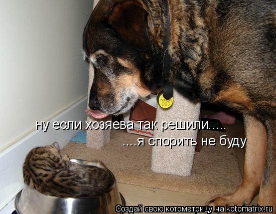 http://de.trinixy.ru/pics4/20090319/kotomatrix_31.jpg