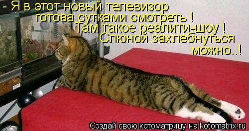 http://de.trinixy.ru/pics4/20090319/kotomatrix_41.jpg