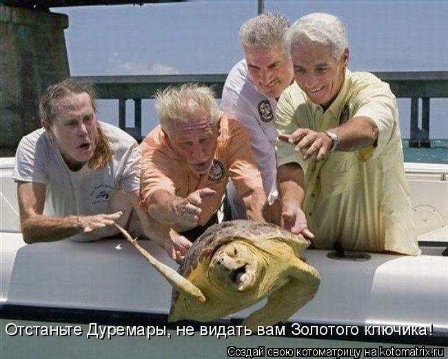 http://de.trinixy.ru/pics4/20090319/kotomatrix_46.jpg