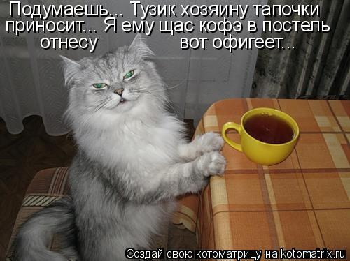 http://de.trinixy.ru/pics4/20090327/kotomatrix_08.jpg