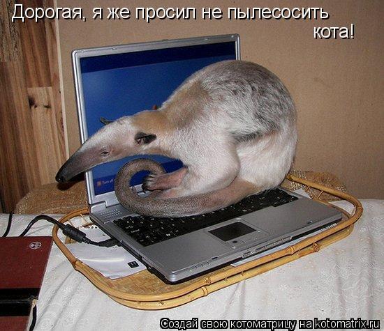 http://de.trinixy.ru/pics4/20090327/kotomatrix_09.jpg