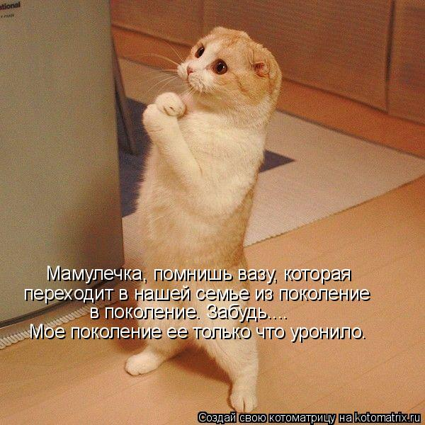 http://de.trinixy.ru/pics4/20090327/kotomatrix_10.jpg