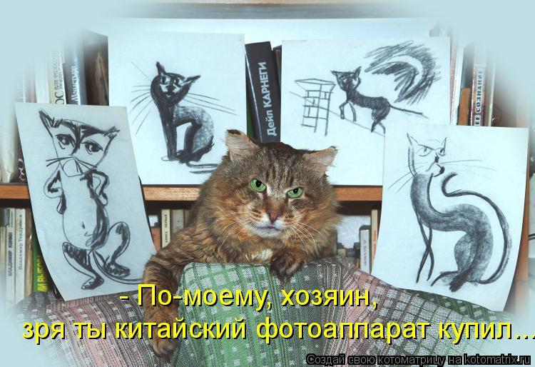 http://de.trinixy.ru/pics4/20090327/kotomatrix_21.jpg