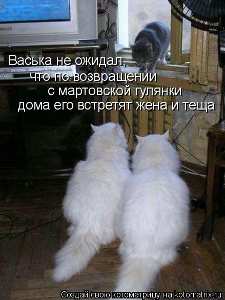 http://de.trinixy.ru/pics4/20090327/kotomatrix_24.jpg