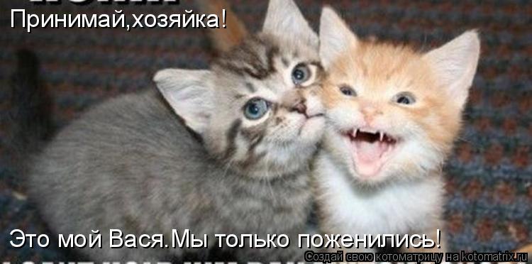 http://de.trinixy.ru/pics4/20090327/kotomatrix_28.jpg