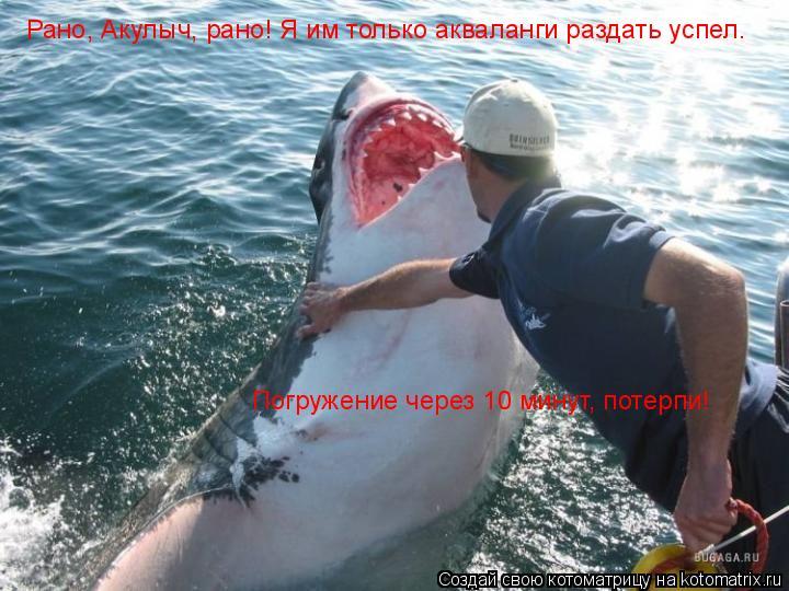 ...огромную самку большой белой акулы, попавшую в его рыболовную сеть.