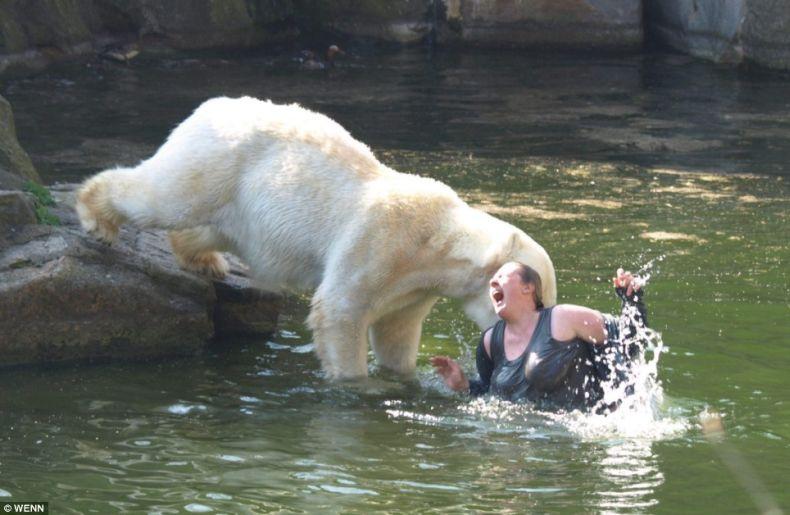 Чудесное спасение в берлинском зоопарке (4 фото + видео)