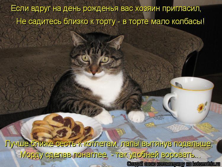 kotomatrix_11.jpg