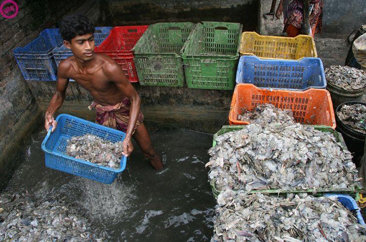 Мир полон мусора (20 фото)