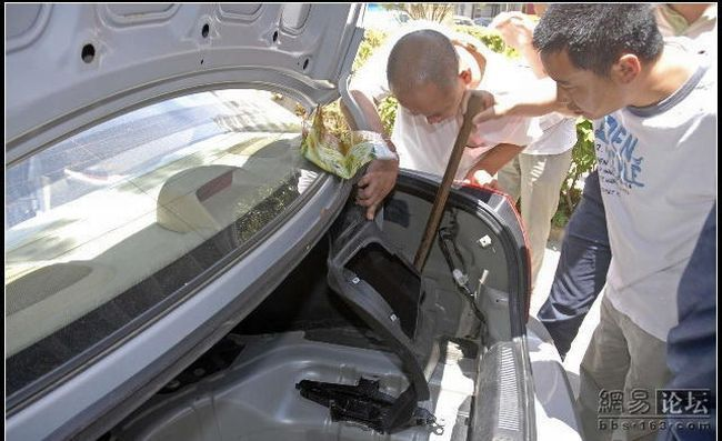 Из машины достали очень опасное животное (11 фото)
