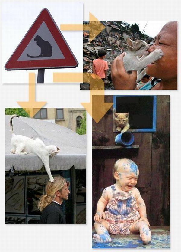 Странные знаки и их описание (14 фото)
