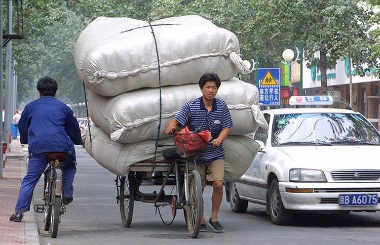 Экзотические методы транспортировки (38 фото)