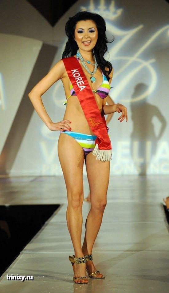 Мисс Азия в США 2009 (11 фото)