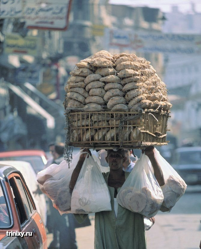 Васильки картинки, африканские смешные картинки
