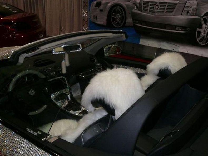 Машина для богатых женщин (13 фото)