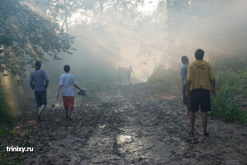 Пустые холмы 2009 (30 фото) НЮ