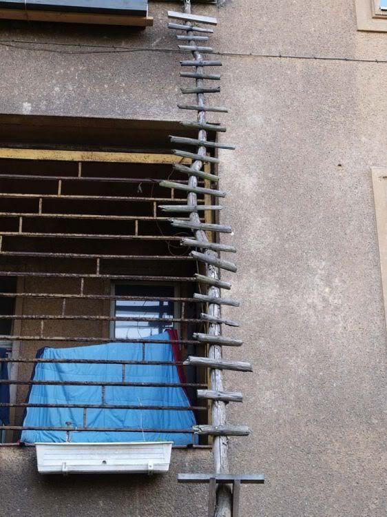 Лестницы для котов