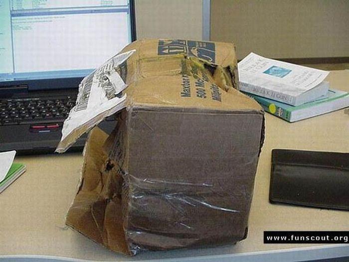 Почему не надо заказывать технику с доставкой по почте (19 фото)