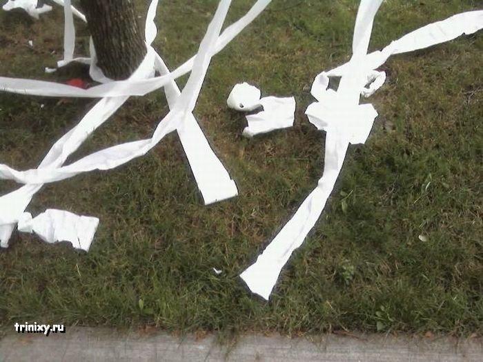 Шутники с туалетной бумагой (11 фото)