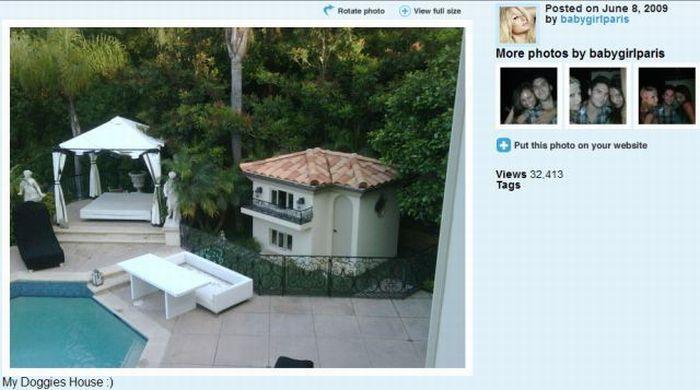 Дом для собак Пэрис Хилтон (12 фото)