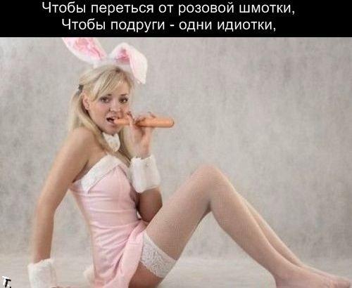 Женская мечта (14 картинок)