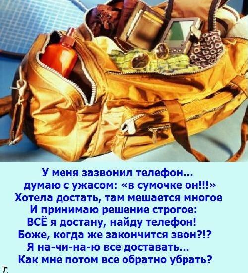 Женская сумочка (7 картинок)