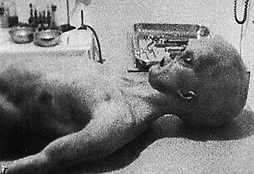 Фотографии пришельцев (14 фото)